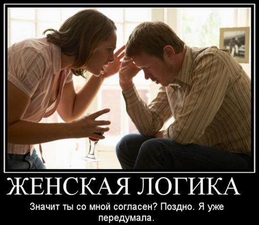 112731413_5321291_152180_zhenskayalogika