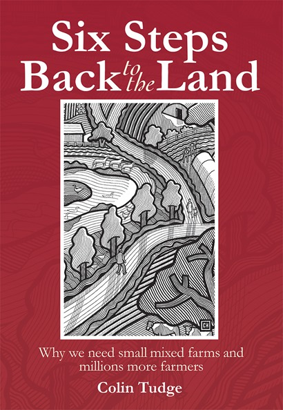 six_steps_back_to_the_land_cover