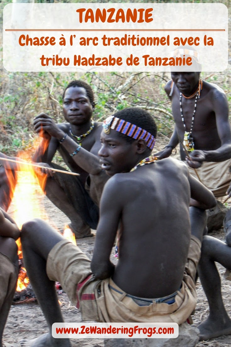 Chasse à l' #arc traditionnel avec la #tribu #Hadzabe // #Tanzanie // #AdventureTravel from Ze Wandering Frogs