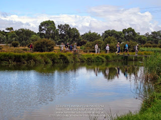 02 Rocky Gully Wetlands-Loop & Main trail (3)