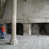 Salle des hôtes : cheminées
