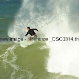 _DSC0314.thumb.jpg