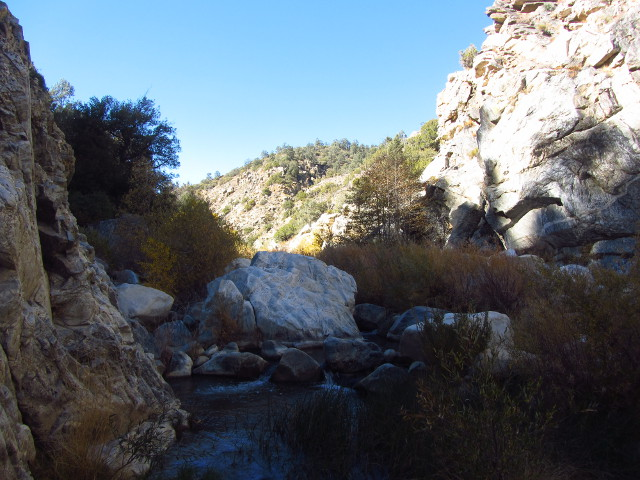 looking up the creek