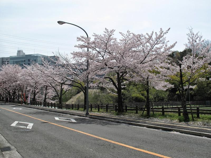 2014 Japan - Dag 9 - max-IMG_1904-0037.JPG