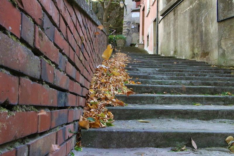 Scala d'autunno di ciuro81