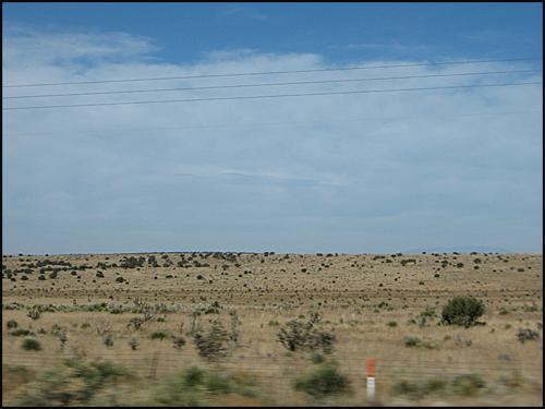 NewMexicoScrubland