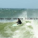 _DSC8872.thumb.jpg