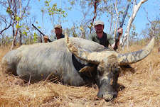 Another fine big buffalo bull taken by Boris Kheyfits from Moscow, Russia. A great day out for the double rifles!