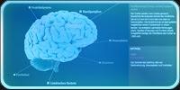 אתרים ואפליקציות מתחומי הרפואה ומדעי החיים
