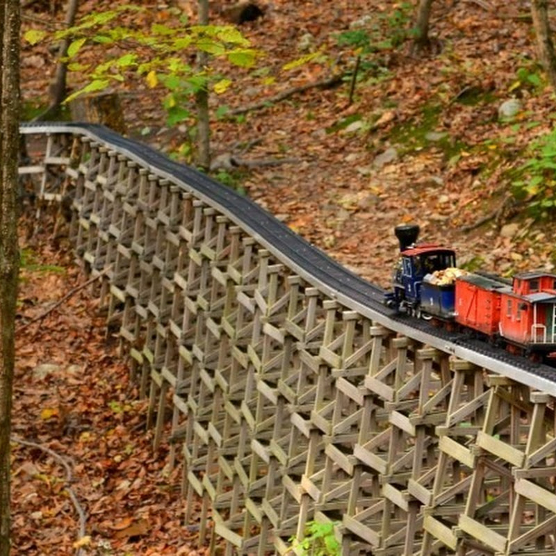 Martini Junction: A Miniature Railway Hidden in The Forest