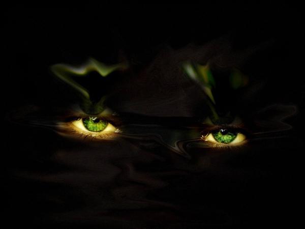 Darkness Gothic, Phantoms