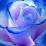 Lisa Di Mola's profile photo