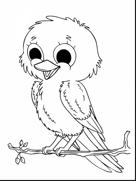 Outstanding Baby Animal Coloring Pages Girls With Free Coloring Pages  Animals And Free Coloring Pages Animals