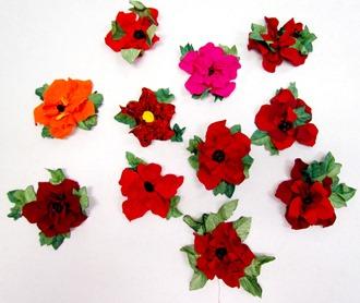 1701016 Jan 10 Ladies 3 D Poppies