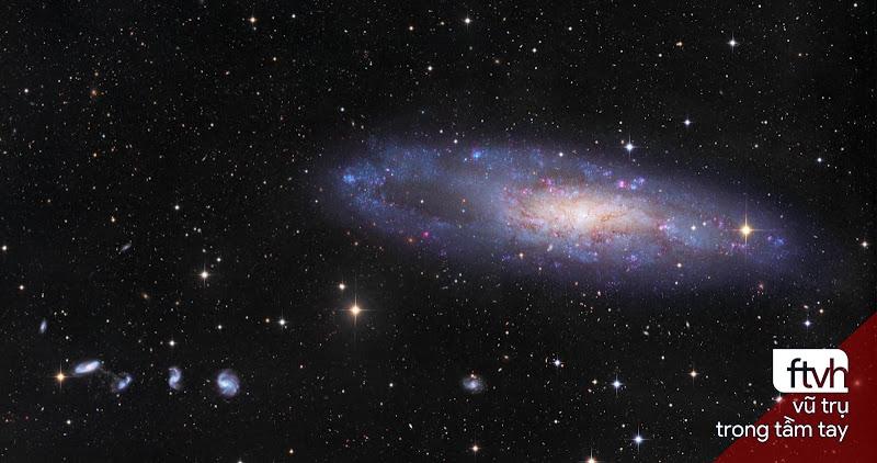 NGC 247 và những người bạn