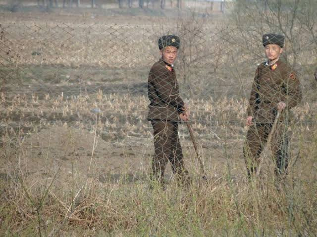 Mencekam, Hampir 200 Tentara Korea Utara Tewas akibat Serangan Virus Corona