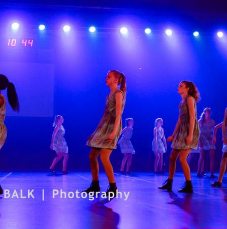 Han Balk Voorster Dansdag 2016-3414-2.jpg