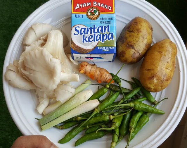 illy ariffincom resepi ayam masak lemak cili padi  sedap  mudah bahan pun tak Resepi Ayam Masak Negro Enak dan Mudah
