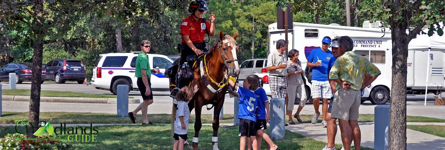 Mounted equine patrols public events The Woodlands Texas