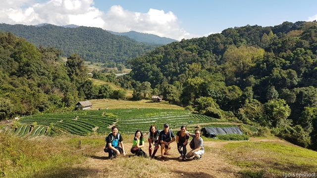 A day out from Chiang Mai to Doi Inthanon National Park, home to Thailand's highest peak