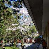 2014 Japan - Dag 7 - jordi-DSC_0274.JPG