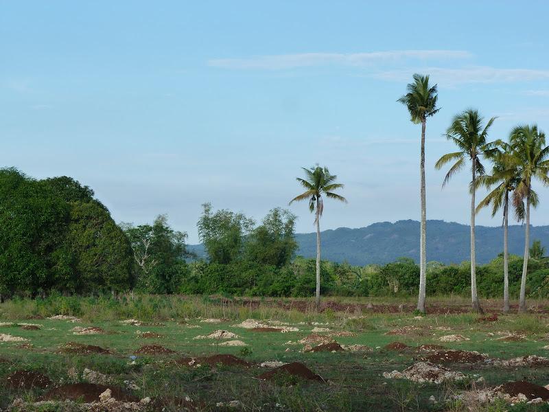 Camotes et Poron island - philippines1%2B1034.JPG