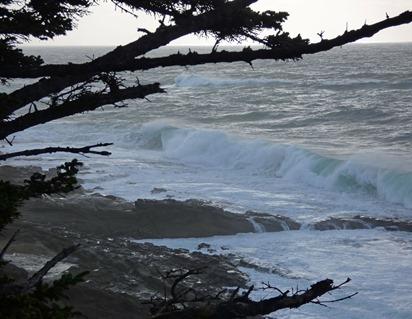 Cape Arago Waves