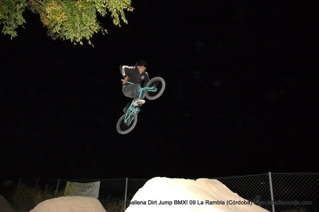 Ballena Dirt Jump BMX 2009 - BMX_09_0174.jpg