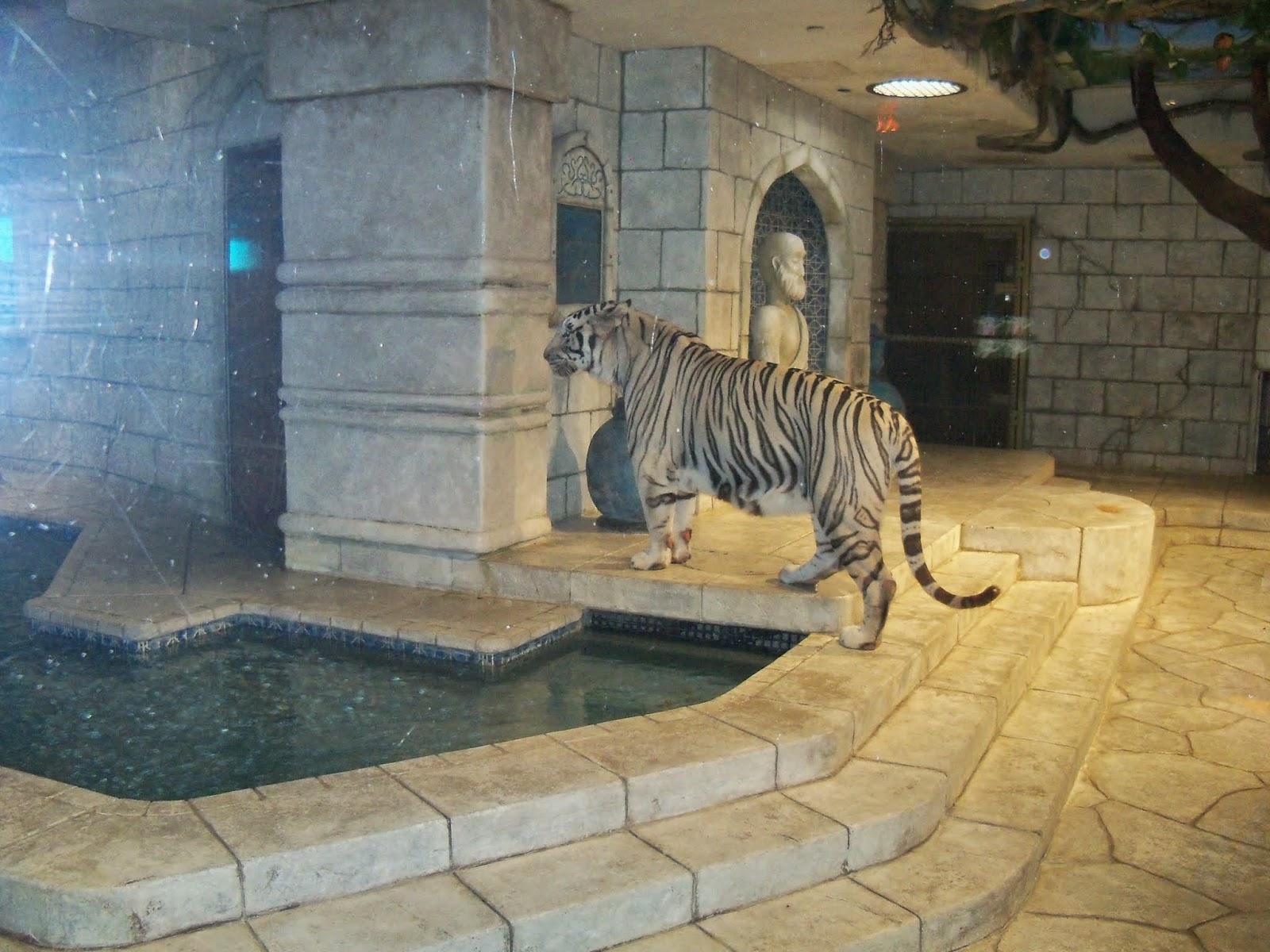 Downtown Aquarium - 116_3974.JPG