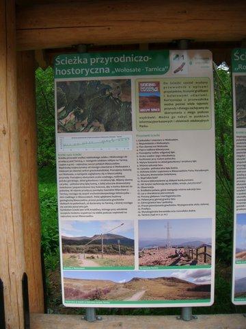 Tarnica - DSCF7427.JPG