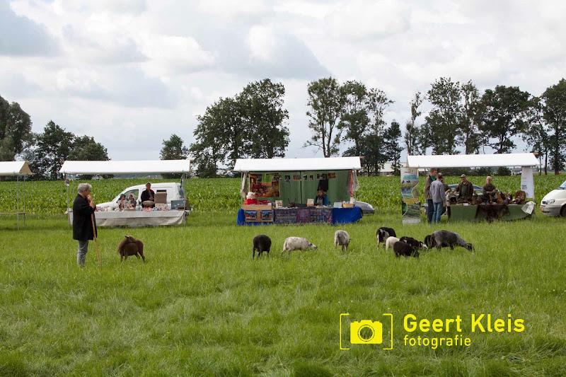 Boerendag Rouveen 2016 - IMG_2298.jpg