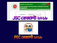 JSC/JDC এবং PEC রেজাল্ট ২০১৮ sms ও ইন্টারনেট থেকে দেখবেন যেভাবে