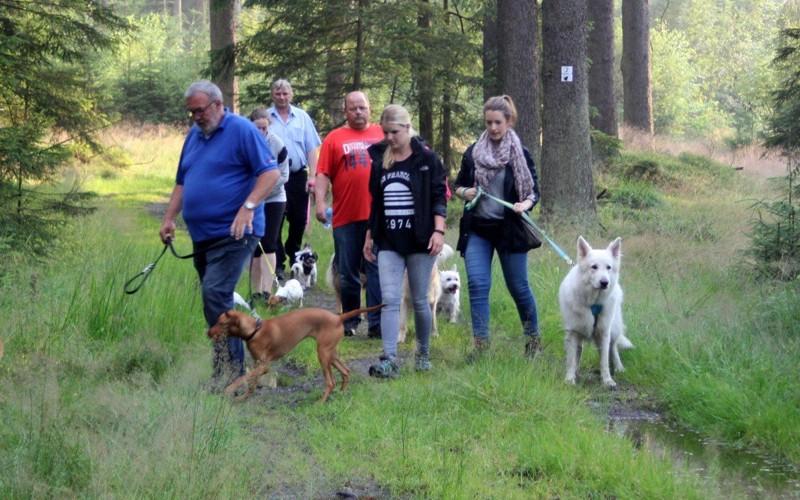 26. Juli 2016: On Tour zum Wolfsgarten bei Wülfersreuth - Schweinsbach%2B%25287%2529.jpg