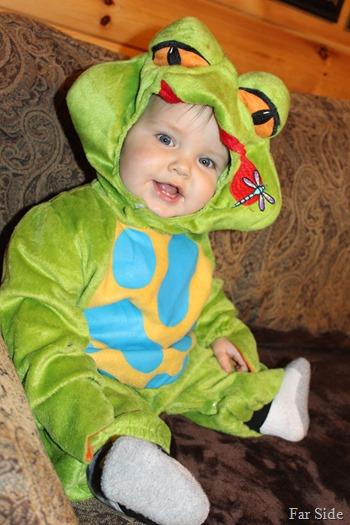A Frog Kelly O