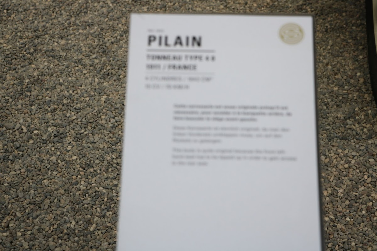 Schlumpf Collection 0529 - Pilain.jpg