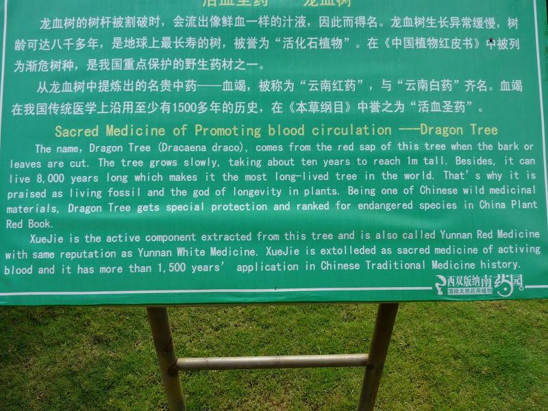Chine .Yunnan . Lac au sud de Kunming ,Jinghong xishangbanna,+ grand jardin botanique, de Chine +j - Picture1%2B666.jpg