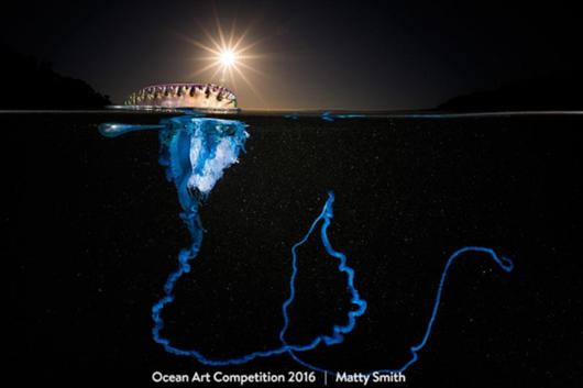 okyanus-sanati-fotograf-odulu-681x454