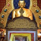Losar Tibetan New Year - Water Snake Year 2140 - 13-ccP2110202%2BB96.jpg