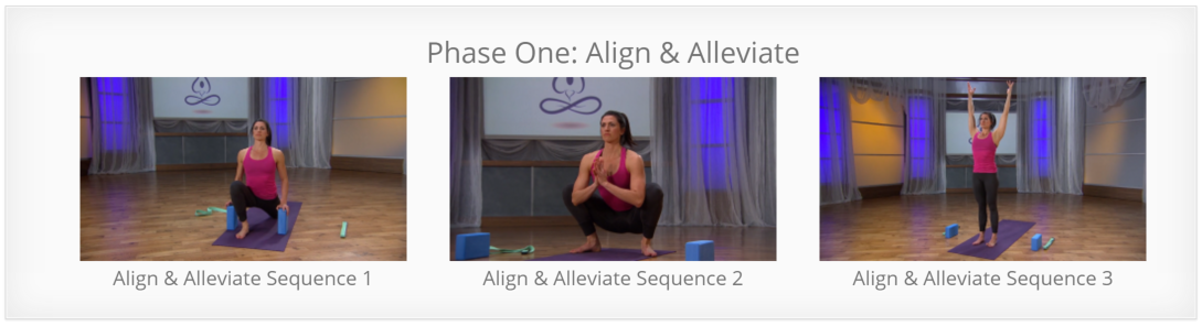 Yoga for Pain Relief - Align and Alleviate Back Pain