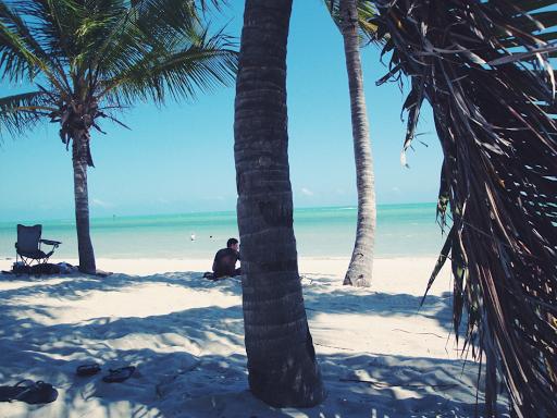 - Travel Plans -