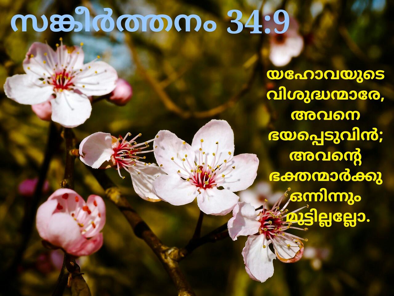 malayalam christian wallpapers: malayalam christian wallpapers