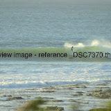 _DSC7370.thumb.jpg