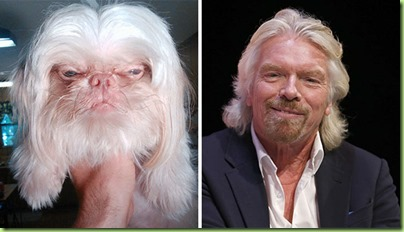 celebrity-look-alikes-animals-7