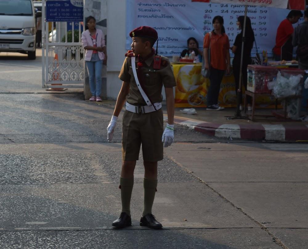 a boy crossing guard hard at work