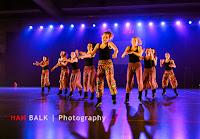 Han Balk Voorster Dansdag 2016-4057-2.jpg