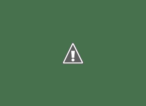 18 05 2013 22+copy - Кошки ))