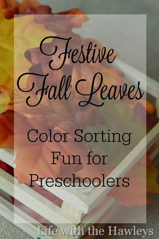 Festive Fall Leaves Color Sorting- Life with the Hawleys- 1