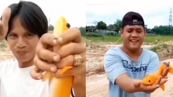 Viral Pemancing Tolak Ikan Gabus Emasnya Ditawar 1 Motor dan Rp20 Juta