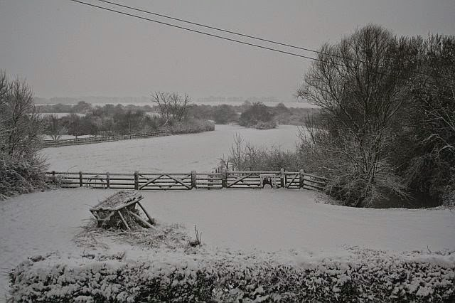 Woodhurst In the Snow - February 2009 - picture16.jpg