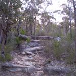 The Karloo Trail (32330)